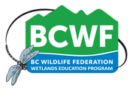 BCWF Wetlands Education Program